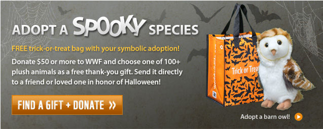 Adopt a Spooky Species! Free trick-or-treat bag with your symbolic adoption!