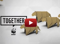 WWF Together - Jaguar