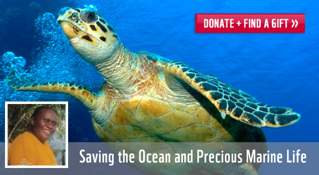 Saving the Ocean and Precious Marine Life: Donate and Find a Gift!