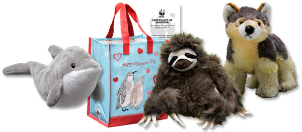 Dolphin, three-toed sloth and gray wolf plushes, adoption certificate and valentine gift bag