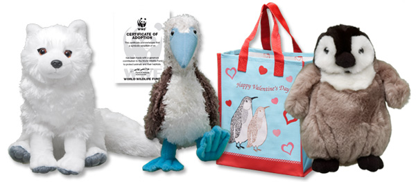 Arctic fox, blue-footed booby and penguin chick plushes, adoption certificate and valentine gift bag