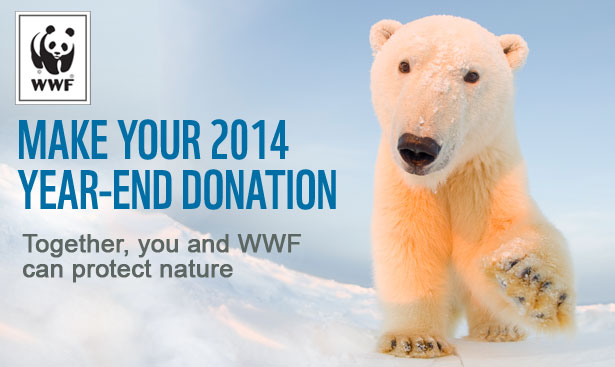 Make Your 2014 Year-end Donation. Together, you and WWF can protect nature.
