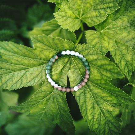 wild lokai bracelet
