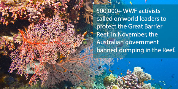 500,000+ WWF activists called on world leaders to protect the Great Barrier Reef. In November, the Australian government banned dumping in the Reef.