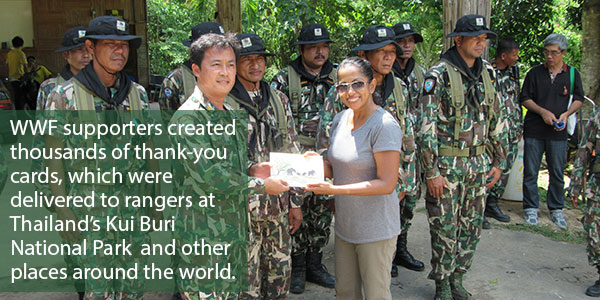 WWF supporters created thousands of thank-you cards, which were delivered to rangers at Thailand's Kui Buri National Park  and other places around the world.