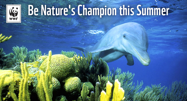 Be Nature's Champion this Summer