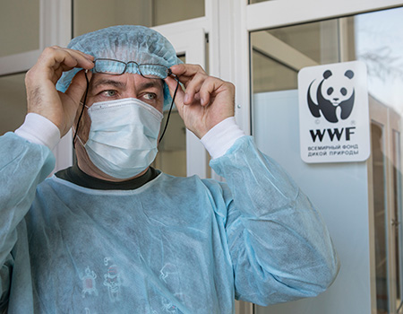 WWF-Russia's Pavel Fomenko