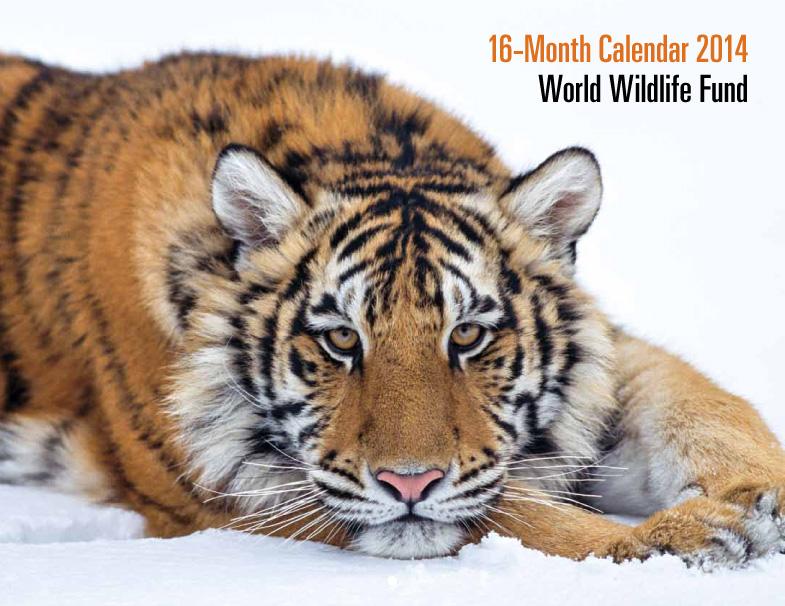 16-month 2014 calendar