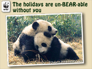 Unbearable Holidays Ecard