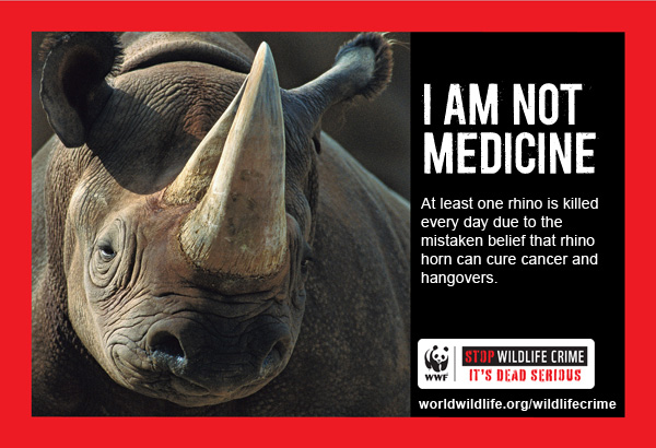 Wildlife Crime PSA Rhino