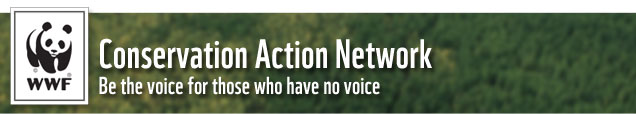 Conservation Action Network: Be the voice for those who have no voice