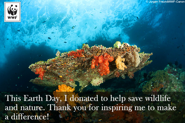 Earth Day Donation Ecard Coral
