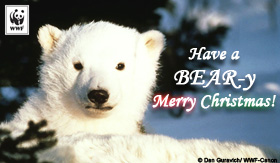 holiday_bearychristmas_ecard_small
