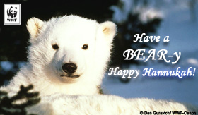 holiday_bearyhanukkah_ecard_small