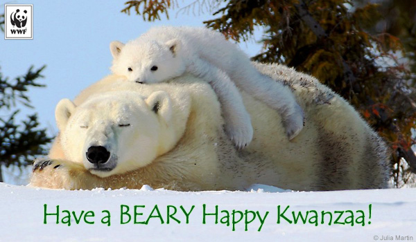 holiday beary kwanzaa ecard
