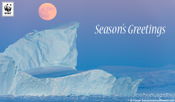 Seasons Greetings holiday ecard