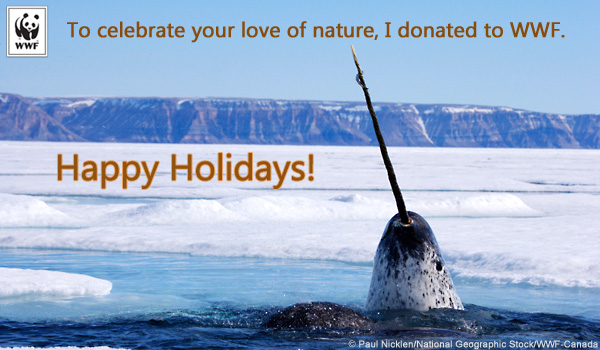 World Wildlife Fund Christmas Cards