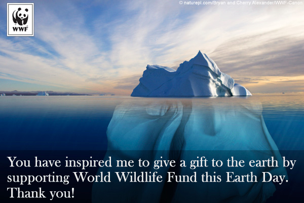 Earth Day Donation Ecard Iceberg