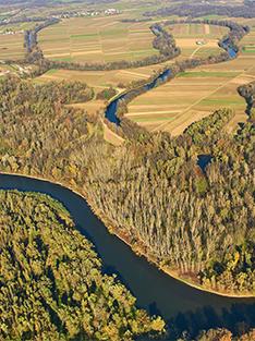 Mura River