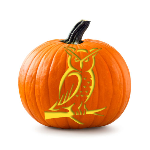 owl_stencil_on_pumpkin