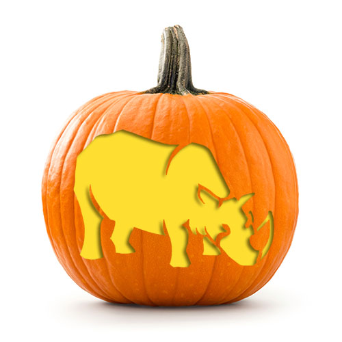 rhino_stencil_on_pumpkin