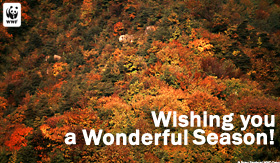 wonderfulseason_ecard_small